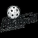 Logo TV Schriesheim Floorball